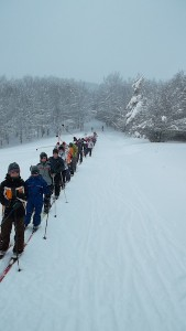 El grupo de expedición por el bosque nevado