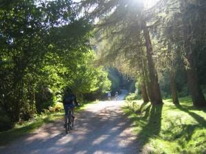 BTT senderismo por Selva Irati desee el Albergue del Pirineo